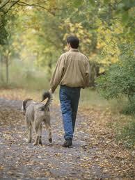 Ruminations on Walking