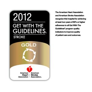 2012 Get With The Guidelines-Stroke Gold Icon