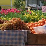San Rafael's Farmer's Market