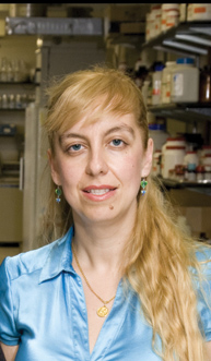 RSNA 2013 HIV research