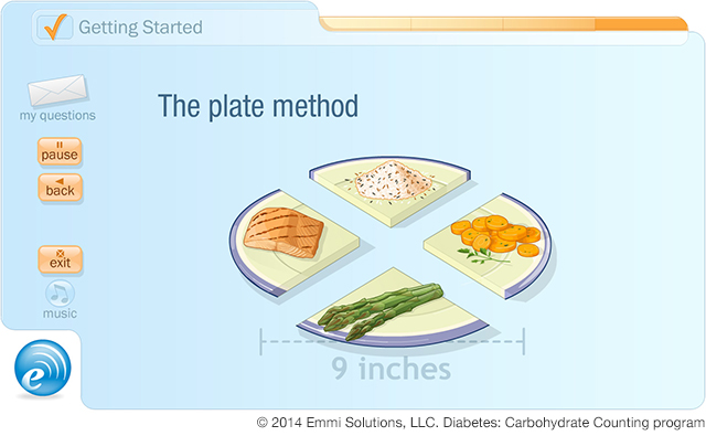 "Emmi Solutions ""Plate Method"" Learning Tool"