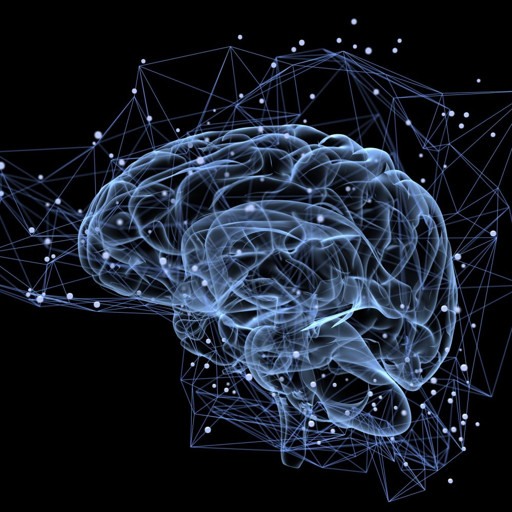 Your Guide To The Top Brain Nootropics For Beginners