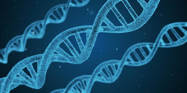 Playing God: Bioengineering and the Future of Medicine