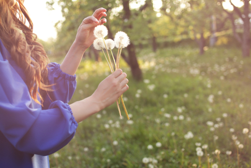 Stop The Sneeze: 10 Helpful Tips On How To Deal With Allergies