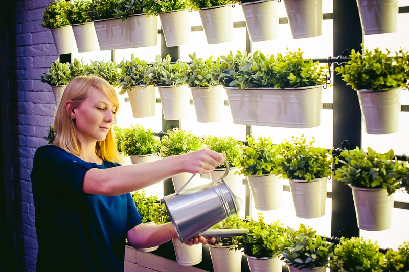 Why Indoor Gardening is a Perfect Hobby for All