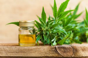 The Benefits And Risks Of Using CBD For Men's Health