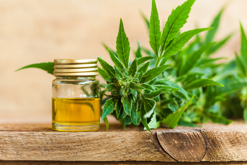 CBD And Wellness: What You Need To Know