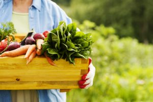 Great Organic Foods To Manage Diabetes And Its Symptoms
