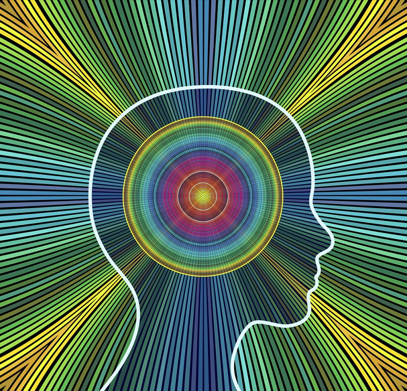 Easy Steps to Increase Your Brainpower