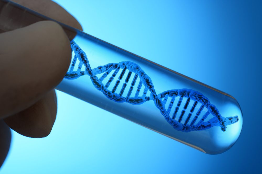 Live A Better & Healthier Life By Solving Your DNA Puzzle!