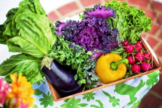 10 Essential Benefits of an Organic Lifestyle