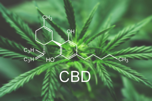 How to Find CBD Gummies That Help With Overall Wellness