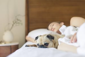 Try These Important Tips To Improve Your Quality Of Sleep