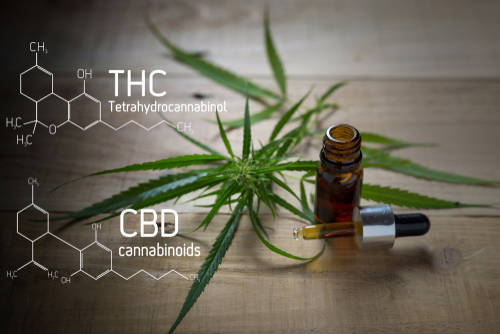 An Honest Look At Supplementing CBD And THC To Maximize Benefits