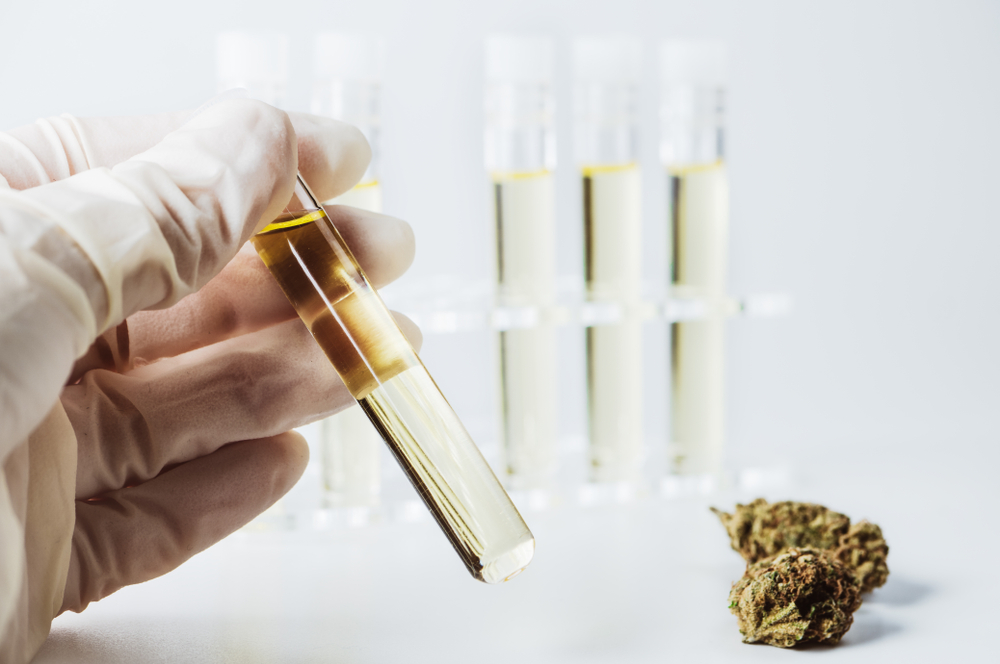 Third Party Lab Testing Plays Crucial Role In CBD Decision Making