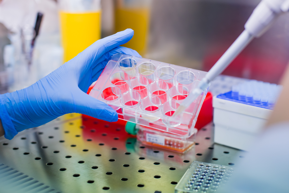 Deciphering the Controversy of Adipose Derived Stem Cells in the Context of Healthcare