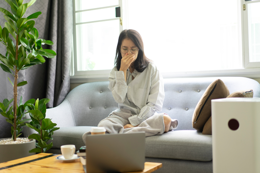 How To Prevent Indoor Air Pollution When Working From Home