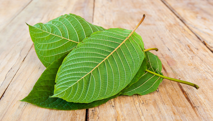 Kratom - What Nurses Should Know | Lippincott NursingCenter