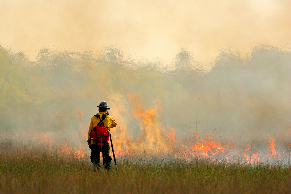 health impact of wildfires