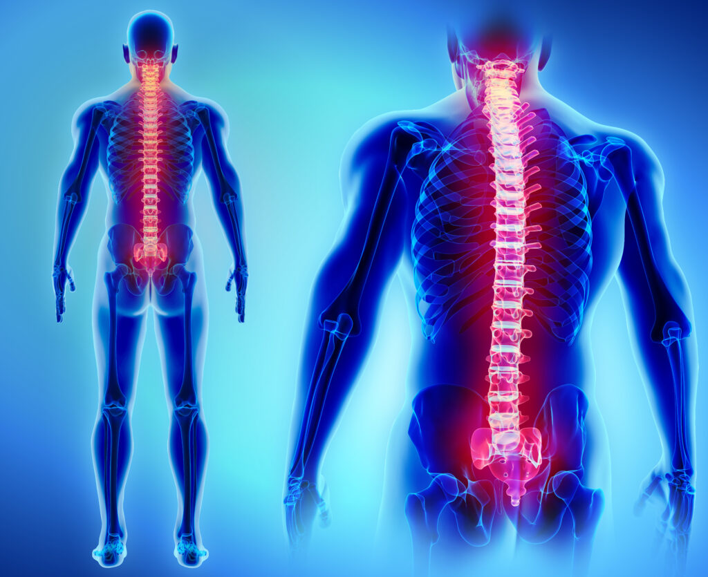 spinal health tips