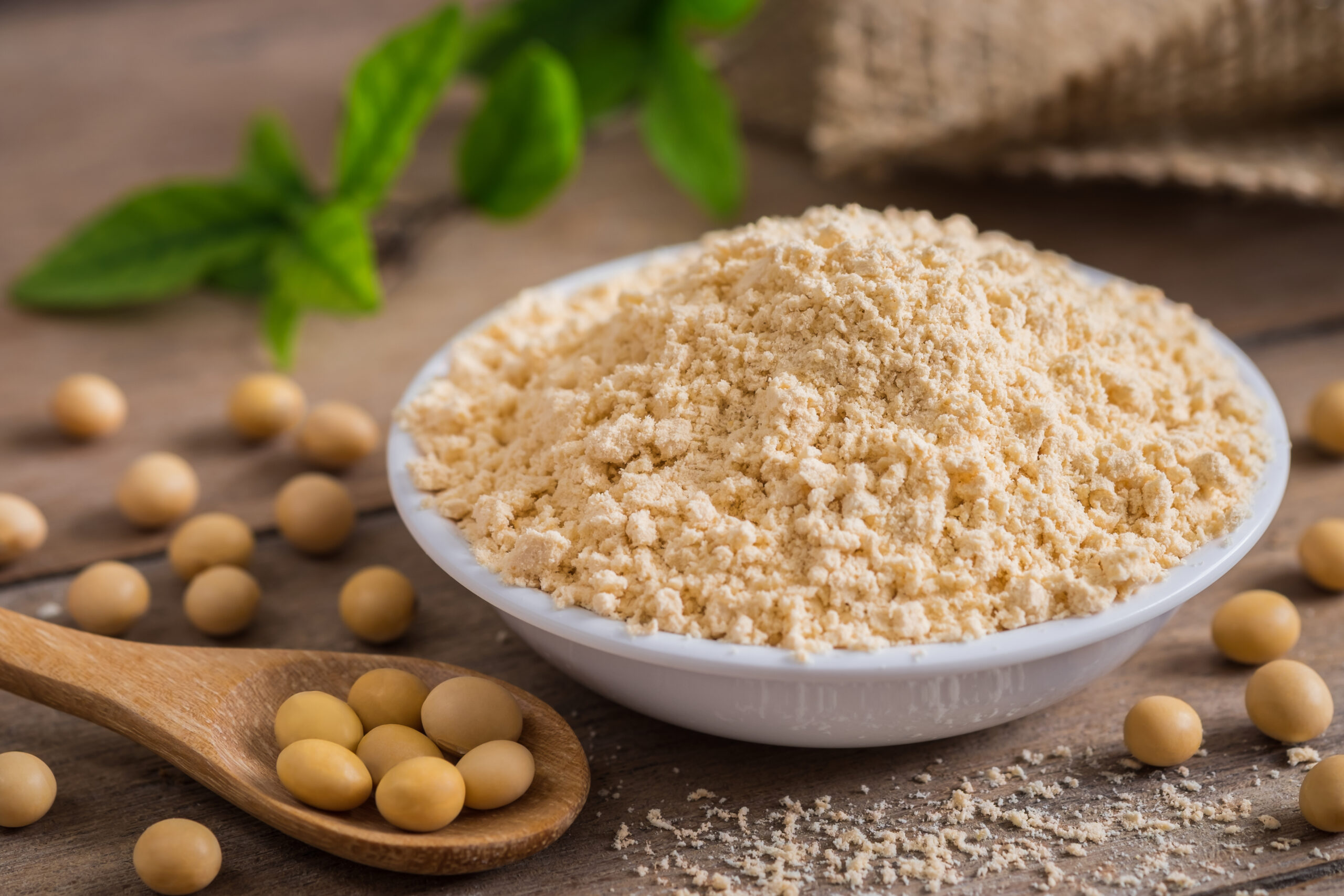Soy-Based Protein Nutritional Supplements Garner Positive Reviews