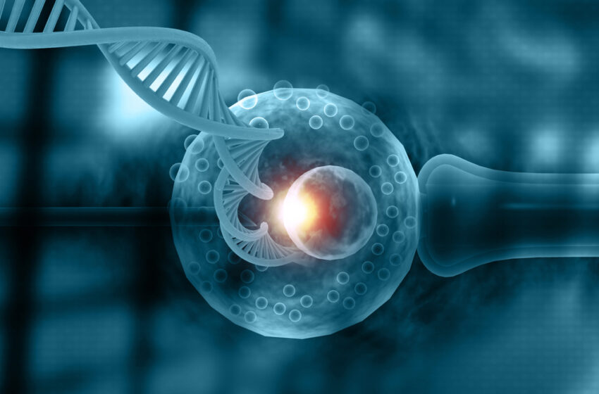 What Are the Benefits of Deferred Transfer Fertility Treatments?